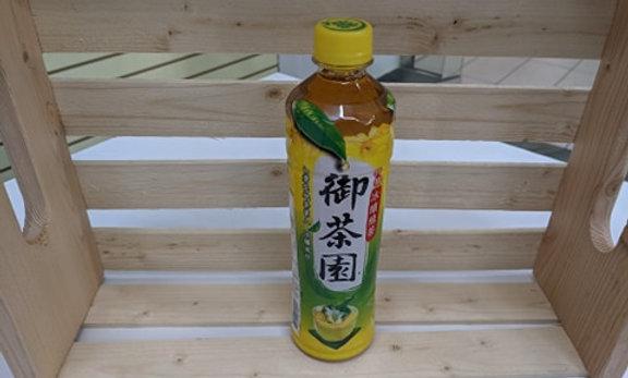 Vitalon Ice Brewed Green Tea