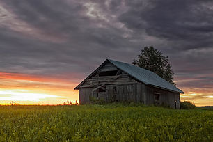 Lonely Barn House On The Fields.jpg