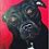 Thumbnail: Custom Acrylic Pet Portrait