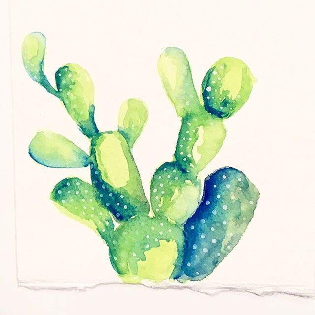 Happy little Friday Cacti