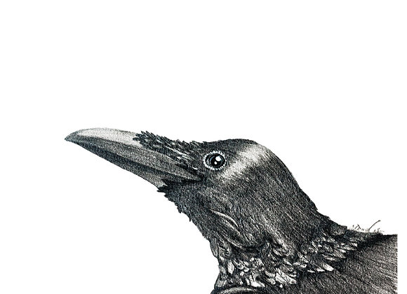 "8x10"" Animal Spirit Print"