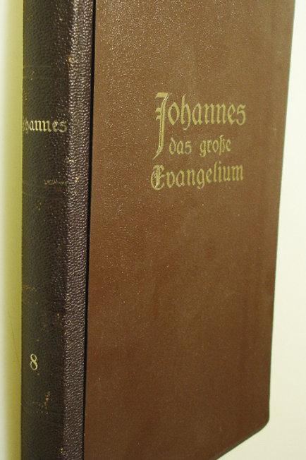 Johannes das grosse Evangelium Band 8