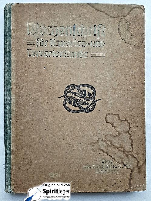 Wochenschrift für Auarien- und Terrarienkunde - ganzes 1919