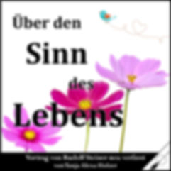 Cover_Über_den_Sinn_des_Lebens_Holzer_St