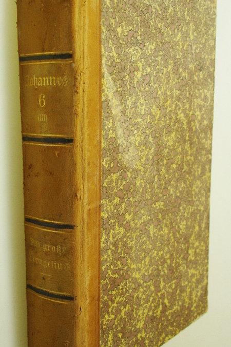 Johannes das grosse Evangelium Band 6 (1910)