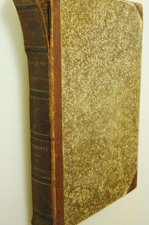 Johannes das grosse Evangelium Band 5 (1886)