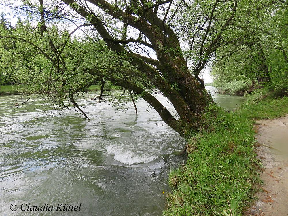 Im Fluss - Blog Bruno Küttel - Claudia Küttel