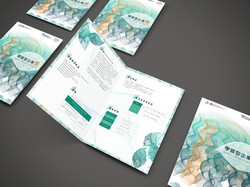 Flyer Design for PolyU LEA