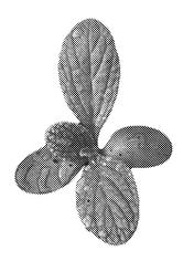 Chloroplast_Blatt_halbtonraster_A4.tif.p