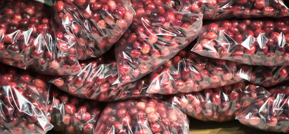 Harvestfest2019KBennett283.JPG