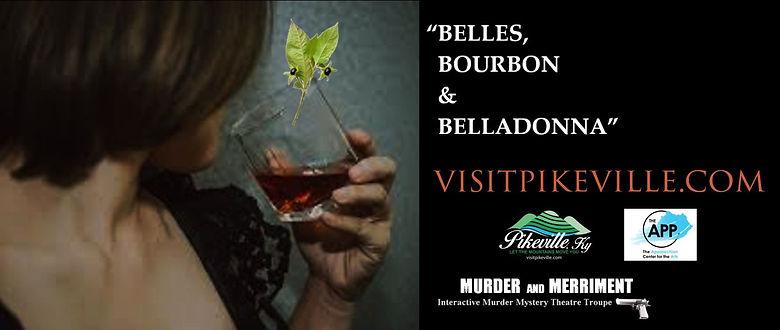 Murder and Merriment banner.jpg