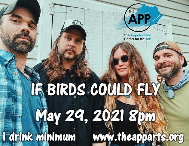 ifbirdscouldfly poster.jpg