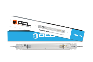 OCL Ampoules double ended