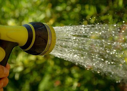 jackmac34 - watering-1601143__480.jpg