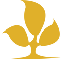 SJ Logo_edited.png