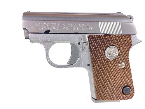 FCW x WE CT25 GBB Pistol ABS Lower Silver Custom