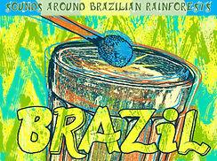 Brazilian instruments.jpg