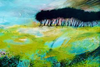 Nicola Durrant - The spring call