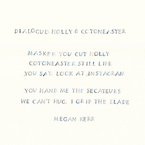 Megan Kerr - Dialogue Holly and Cotoneaster Holly and Cotoneaster - Megan K