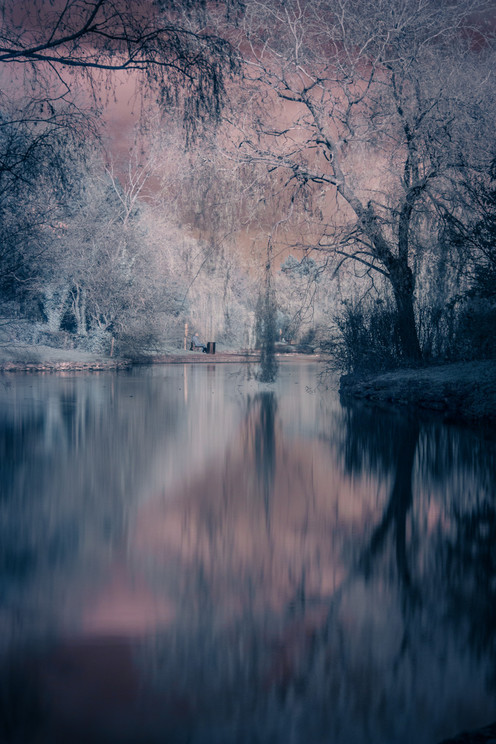 Phill Knight - Solace in Infrared