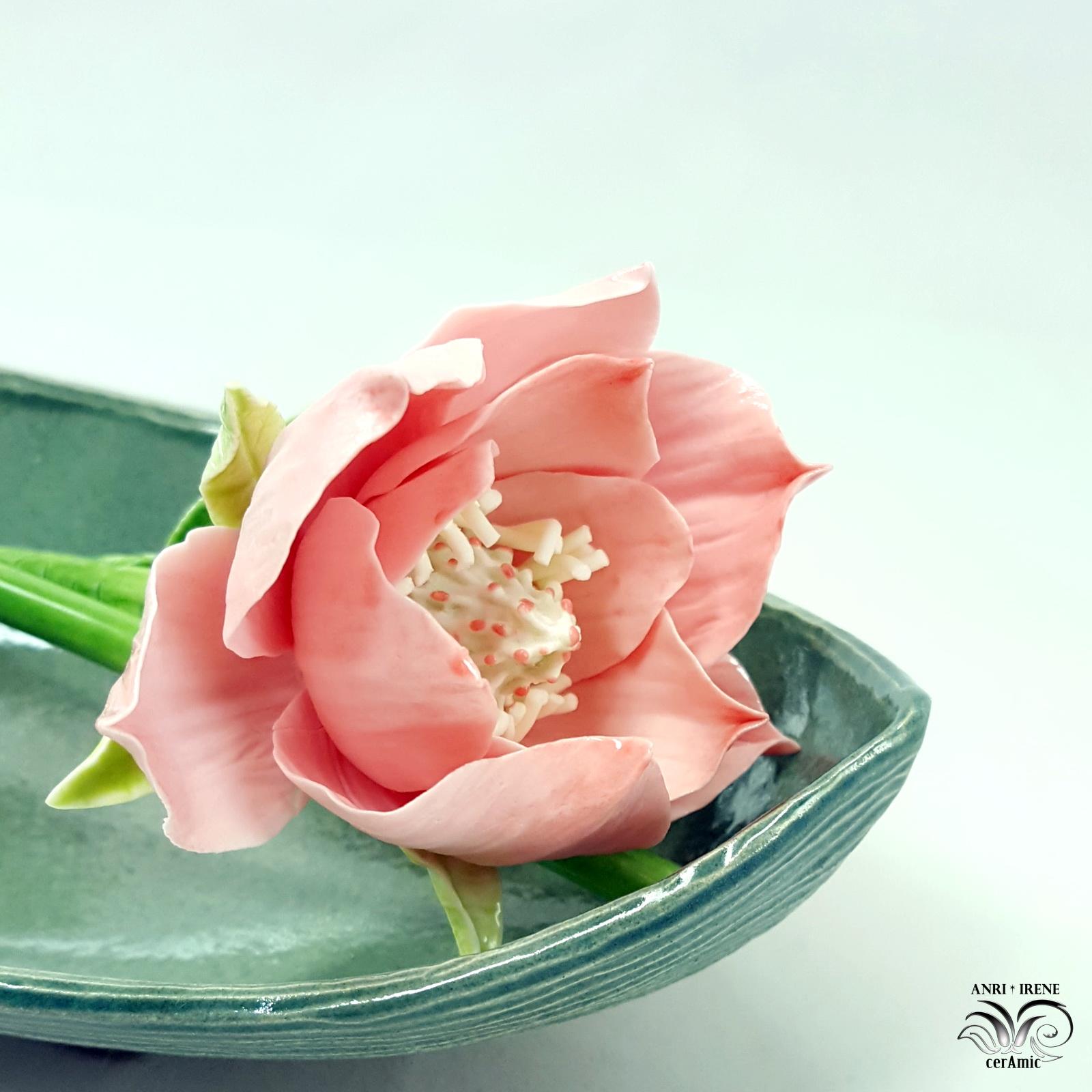 Ceramic magnolia