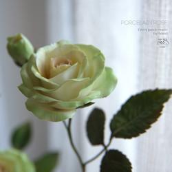 Porcelain green rose
