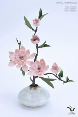 Porcelain pink magnolia