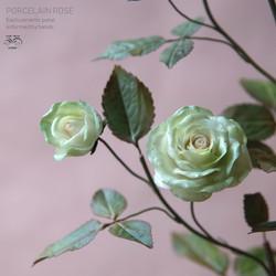 Porcelain rose green