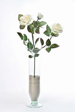 Porcelain peach rose, branch