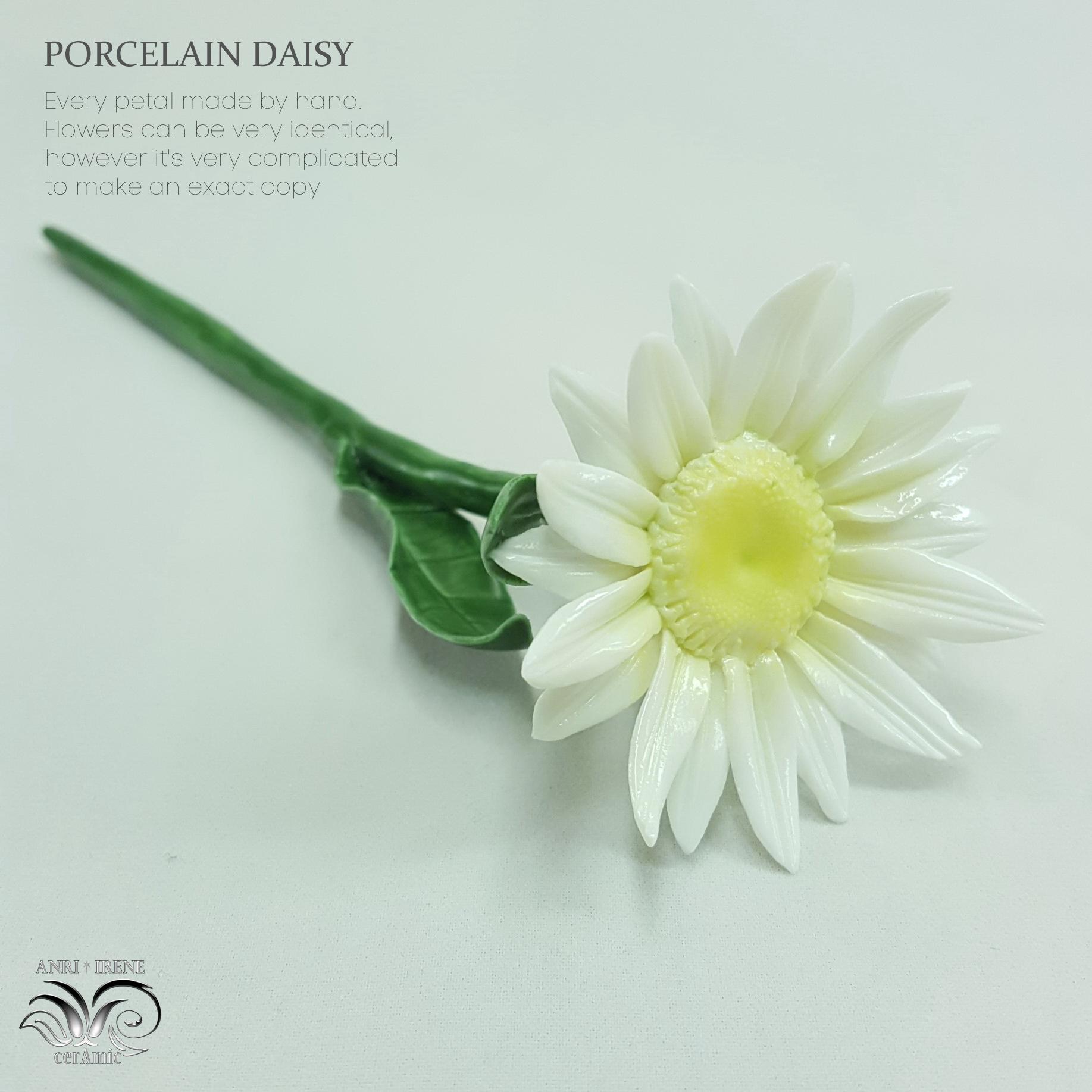 Porcelain daisy