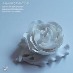 Porcelain white magnolia