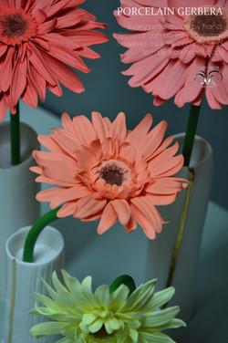 Porcelain daisy gerbera
