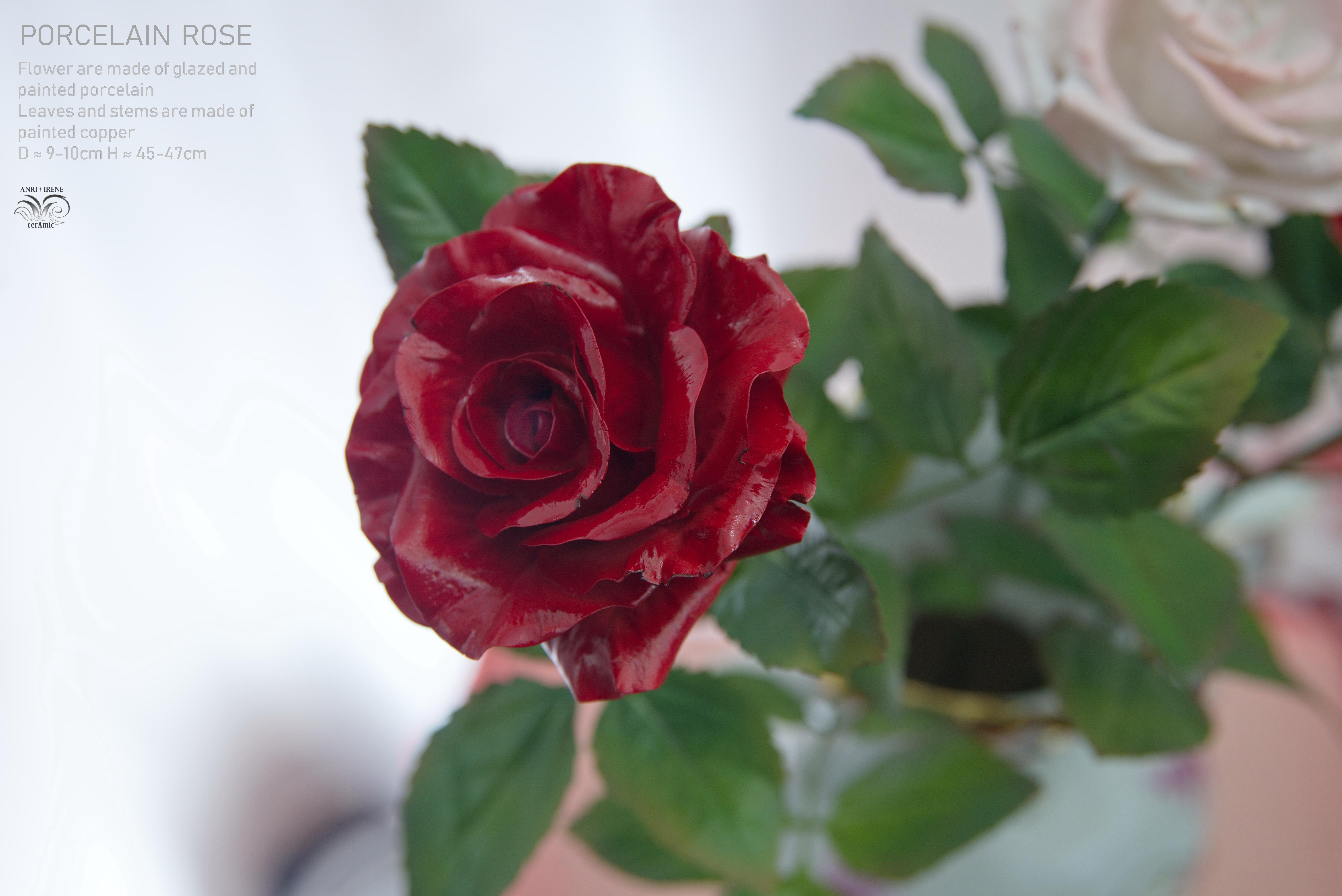 Porcelain red rose