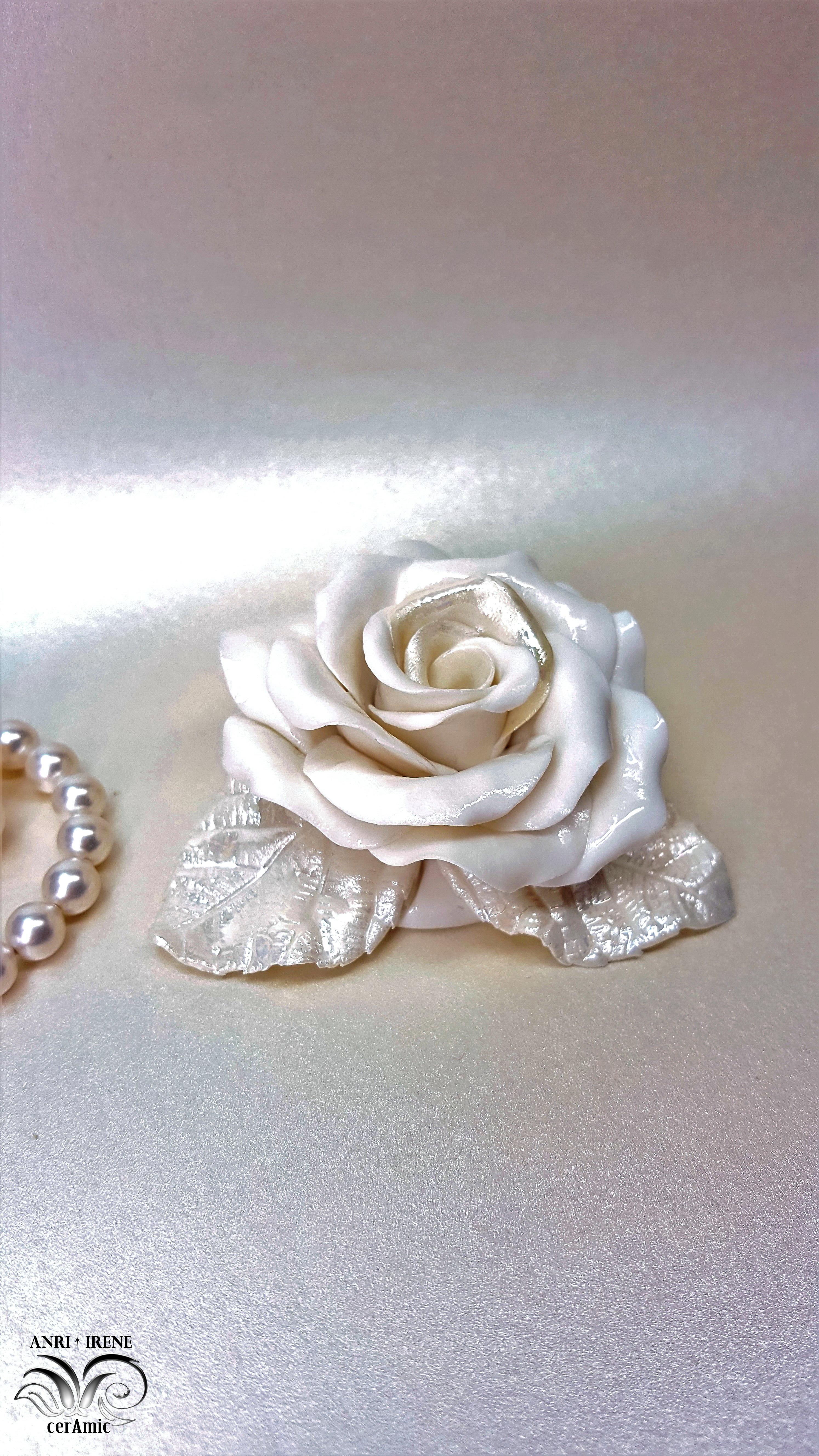 rosa de la porcelana