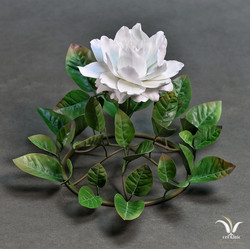 Porcelain camellia , circular