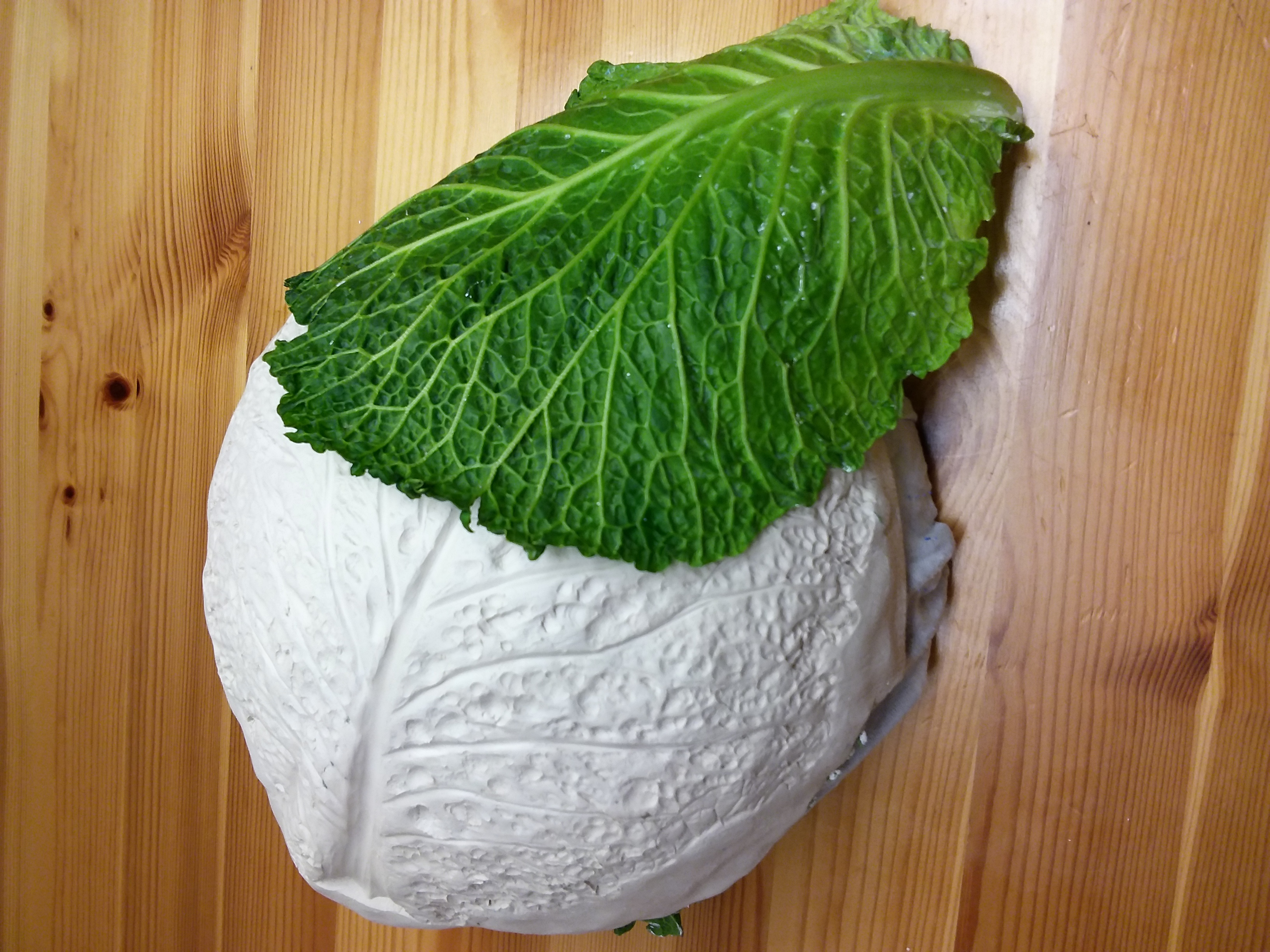 Cabbage moulds