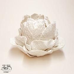 Ceramic cabbage vagetable