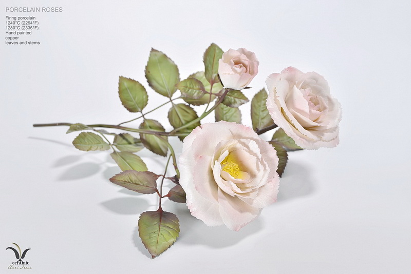 "Porcelain rose ""Sweet kiss"""