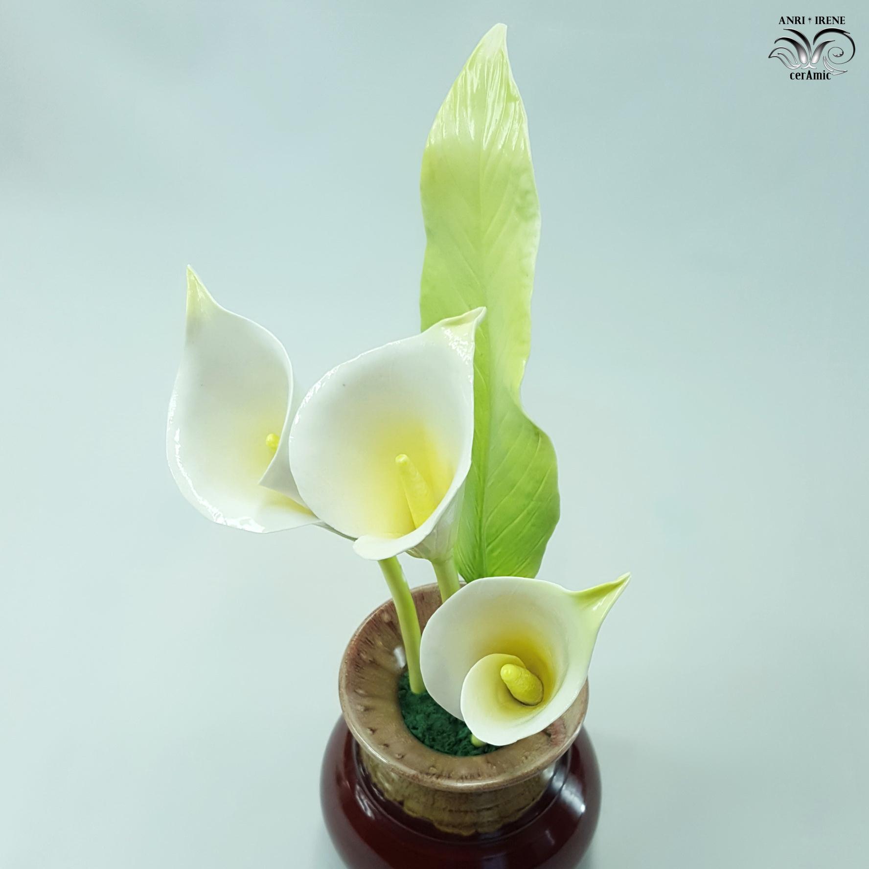 Porcelain lily calla