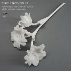 White porcelain flower campanula