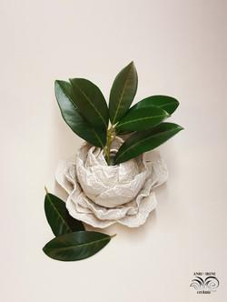 Cabbage vase porcelain