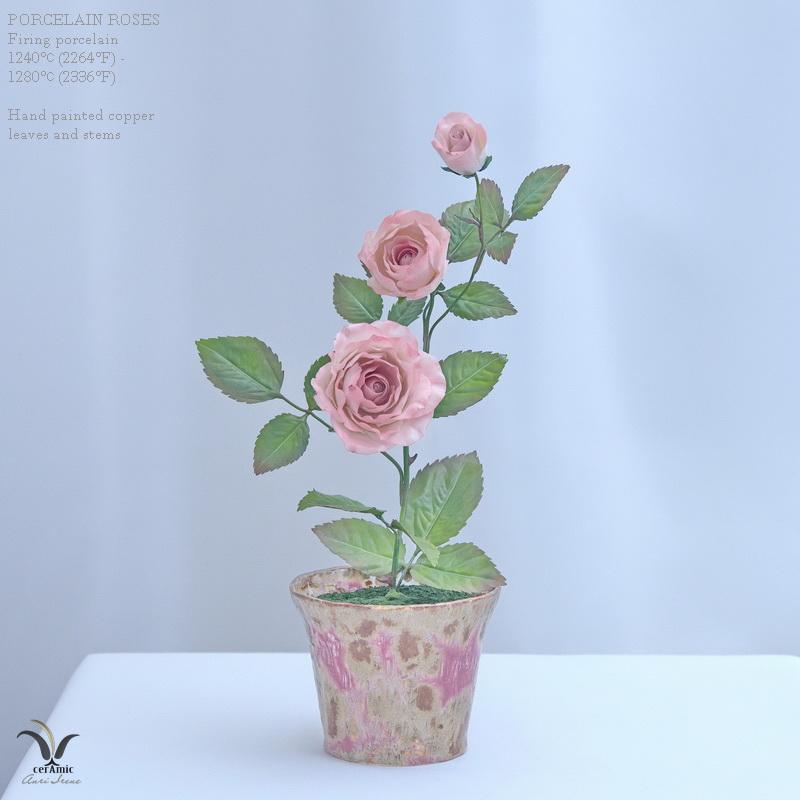 Porcelain pink roses