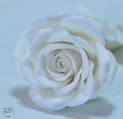 Fine porcelain flower