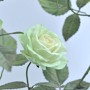 PORCELAIN GREEN ROSES