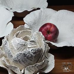 Cabbage porcelain texture