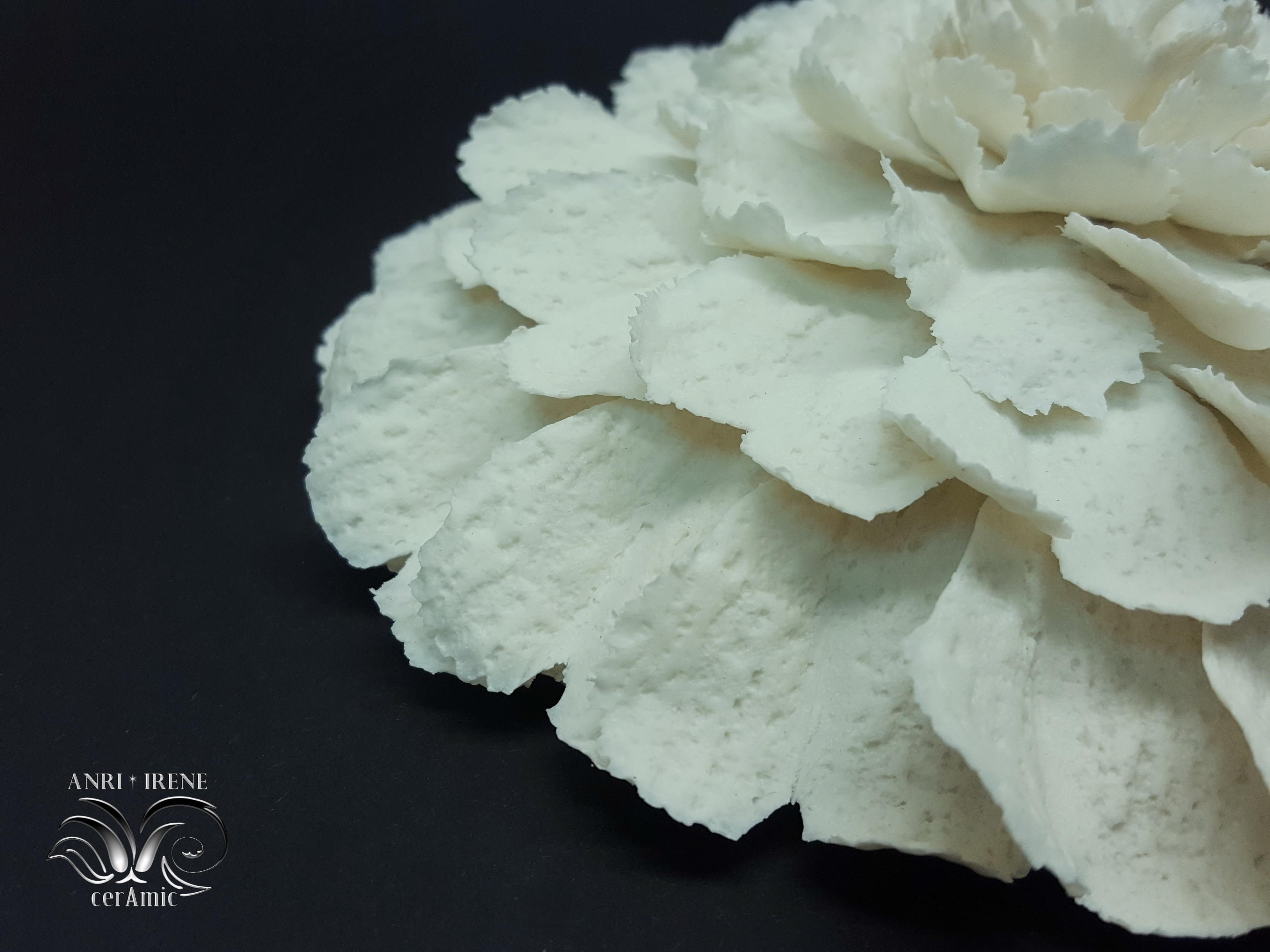 porcelaine fleur
