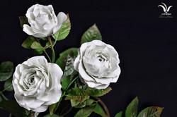 Porcelain white roses