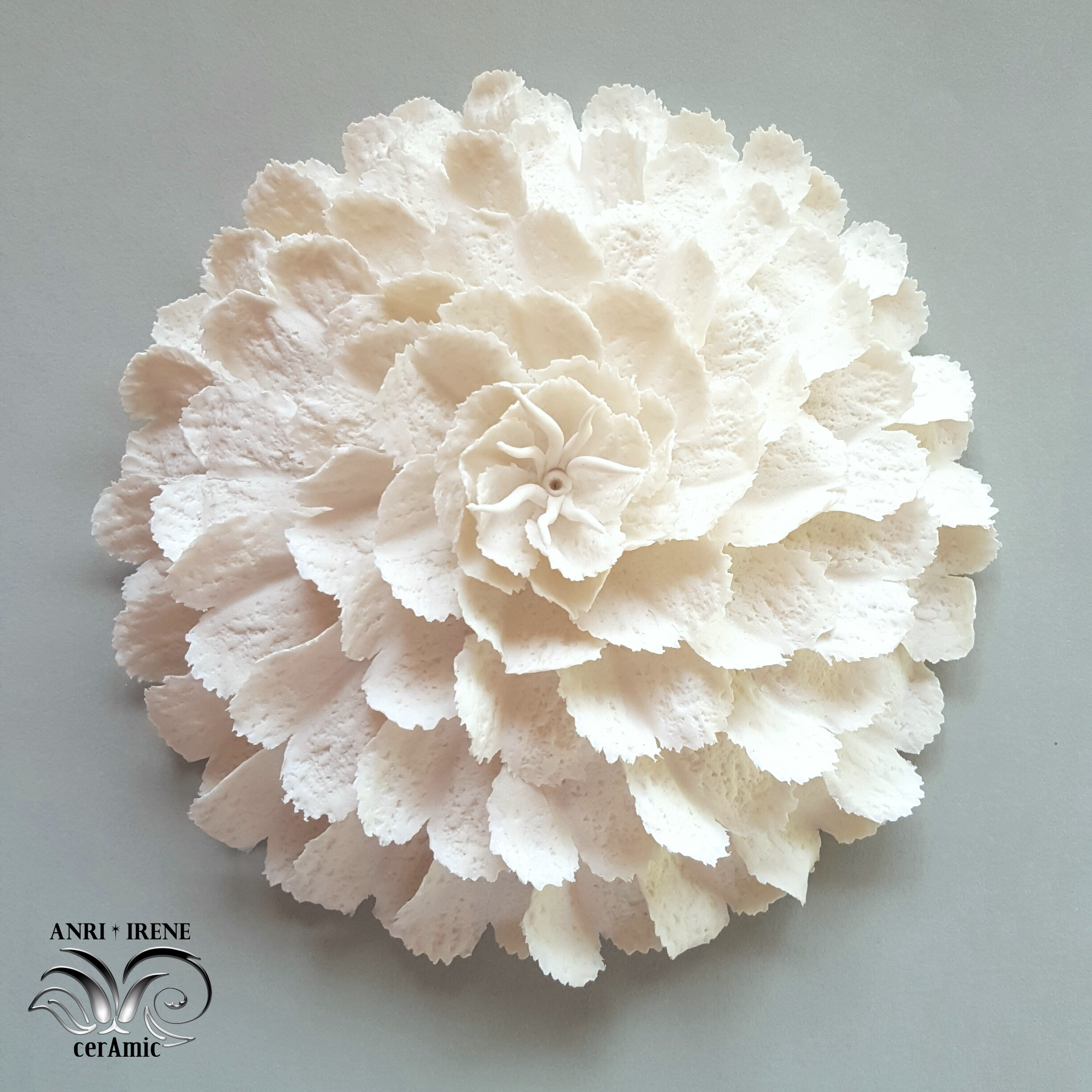 porcelain sea flora