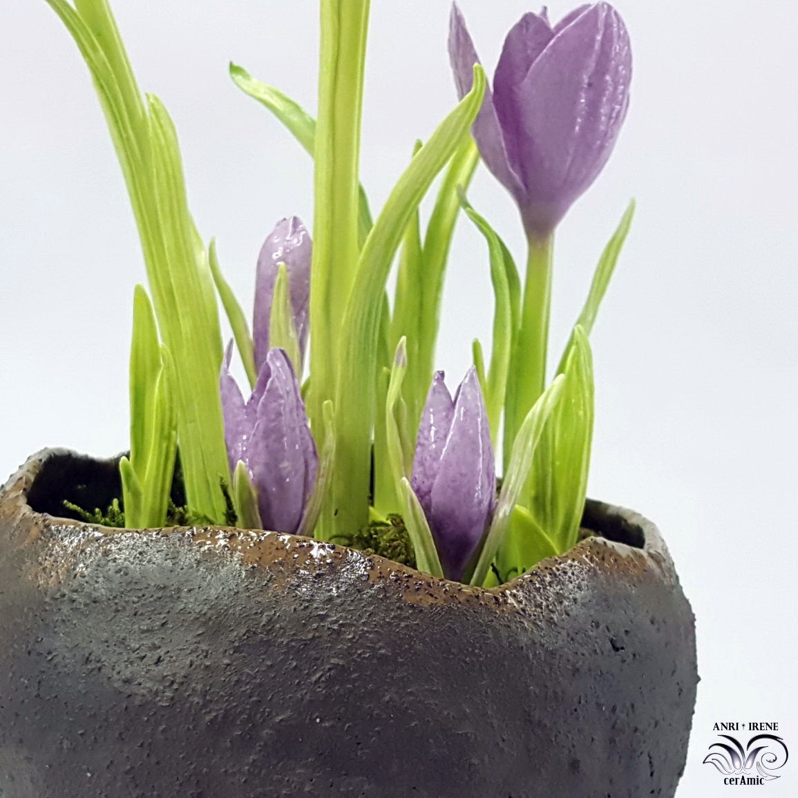 Ceramic floral crocuses