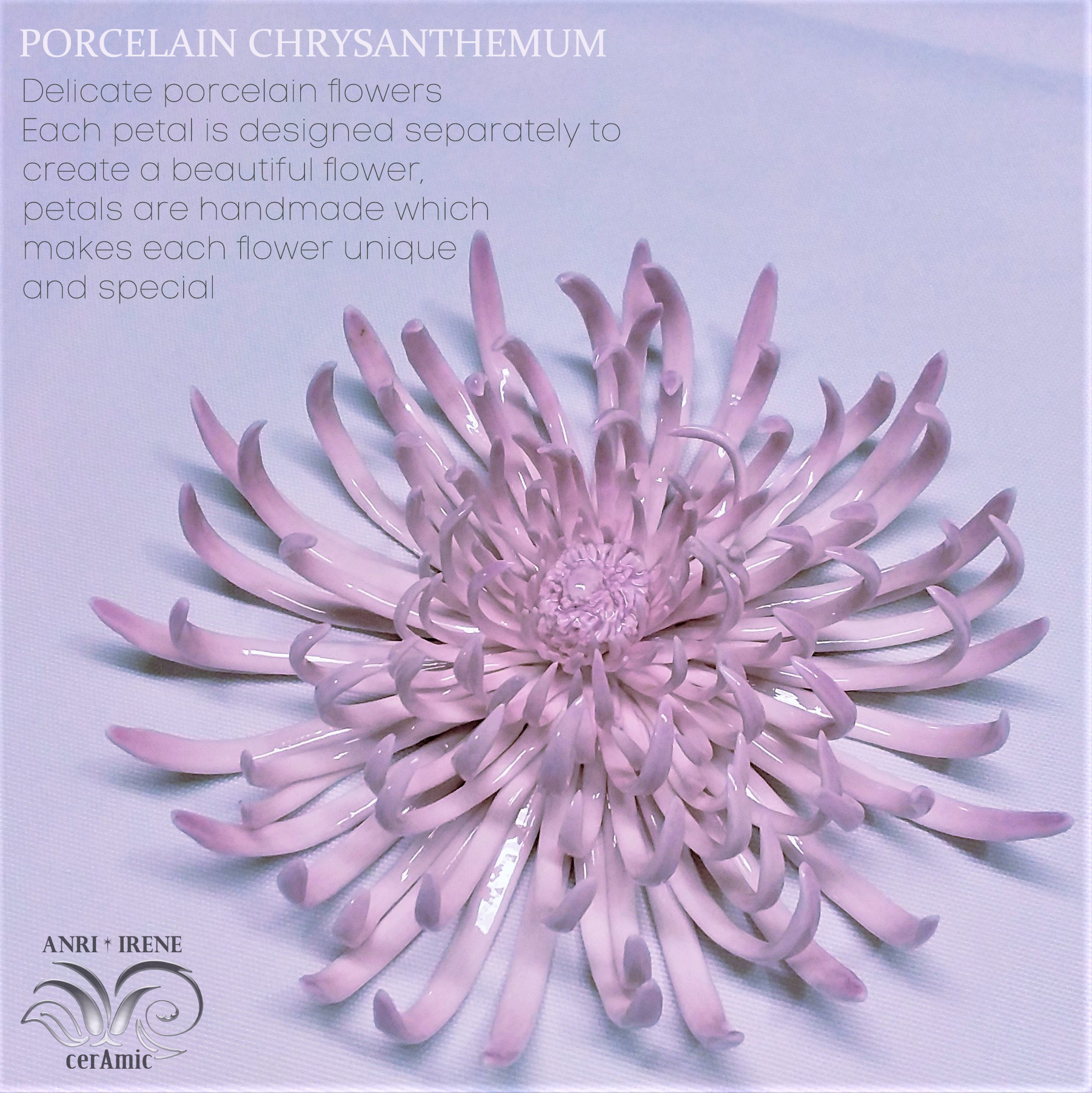 Porcelain chrysanthemum ceramic